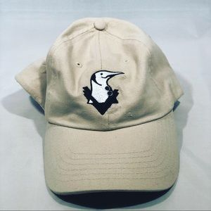 Visaecor Apparel Dad Hats